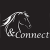Paard & Connect